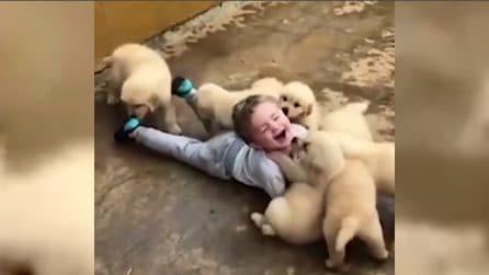 Bimbo sopraffatto dall'amore dei cagnolini: non c'è scena più dolce