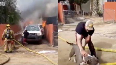 Rischia la vita per salvare il suo cane: affronta le fiamme alte per il suo amico a 4 zampe