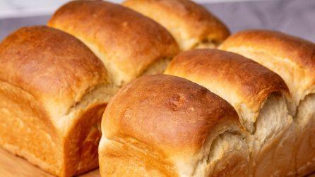 Pan brioche soffice al latte: il segreto per farlo morbidissimo e alto!