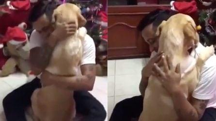 Dopo l'intervento chirurgico il cucciolo ha bisogno dell'abbraccio del suo migliore amico