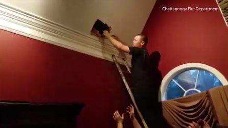 I padroni di casa sentono rumori attraverso il muro, pompieri lo sfondano e liberano il cane
