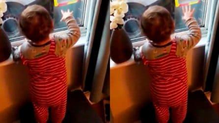 """Il vicino viene arrestato dalla polizia, bimbo di 18 mesi lo saluta: """"bye, bye"""""""