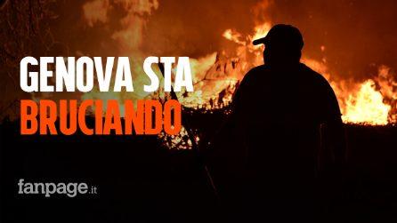 Incendio nella notte a Genova: scuole e A10 chiuse, 70 persone sfollate