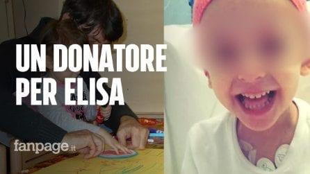 """Elisa, 5 anni, malata di leucemia. L'appello del papà: """"Trapianto non riuscito, cerchiamo donatore"""""""