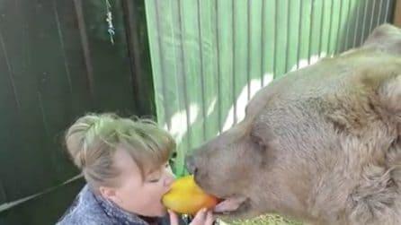 Condivide il mango con il suo grosso amico: l'orso lo adora