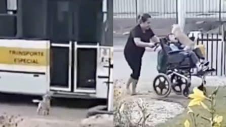Il bambino sulla sedia a rotelle è appena tornato: il suo cane lo accoglie meravigliosamente