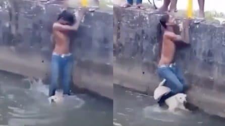 Il suo cane cade in acqua e rischia di annegare: il padrone compie un gesto magnifico