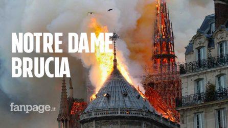 """Incendio Notre Dame, lo storico dell'arte Tomaso Montanari: """"Situazione apocalittica"""""""