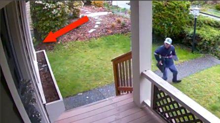 """Il cane sfonda la finestra avvertendo un """"pericolo"""", l'uomo scappa via"""