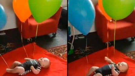 Genitori legano i palloncini al bimbo e riprendono la sua reazione