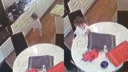 La cucina è vuota e lei ne approfitta: questa bambina è furbissima