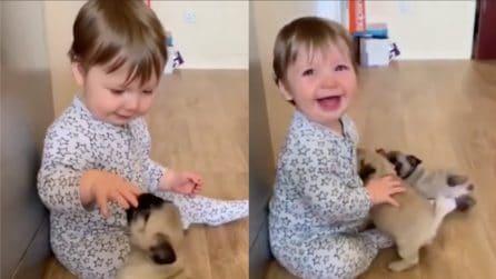 Fa amicizia coi suoi cuccioli: la scena è tenerissima