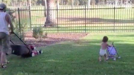 Vuole aiutare il suo papà a tagliare l'erba: la scena è tenerissima