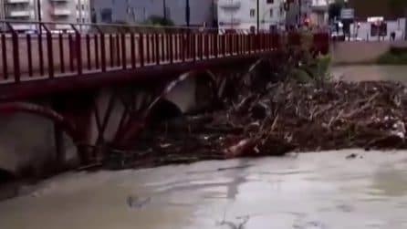 Maltempo, il fiume Savio rompe gli argini: guardate cosa accade sotto al ponte