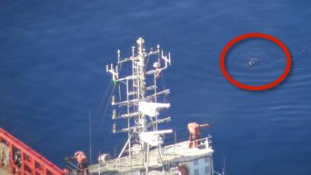 Un migrante si tuffa in mare per sfuggire alla Guardia Costiera libica: le immagini dall'alto