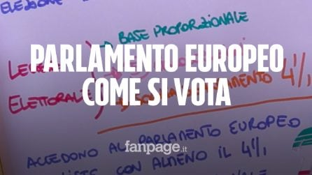 Elezioni europee 2019, come si vota spiegato in 120 secondi