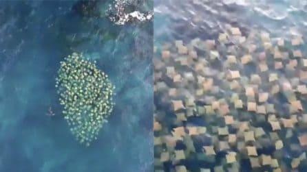 Il drone riprende lo scenario assurdo in acqua: ecco di cosa si tratta