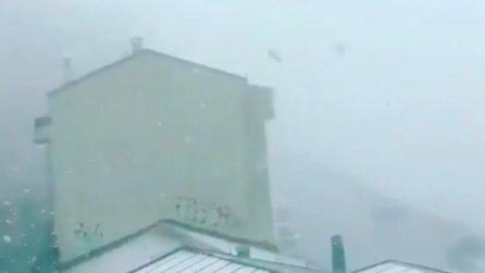 Cadono fiocchi come se fosse inverno: la tempesta di neve è spaventosa