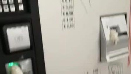 Blitz nella metro di Milano, 70mila euro di danni: biglietterie e tornelli vandalizzati