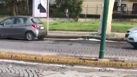 Napoli, ruba un cassonetto dell'immondizia e lo carica sullo scooter