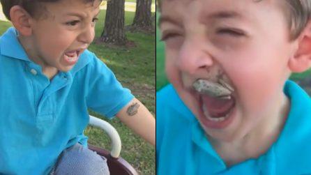 Il bimbo è terrorizzato, mamma cerca di aiutarlo ma peggiora la situazione