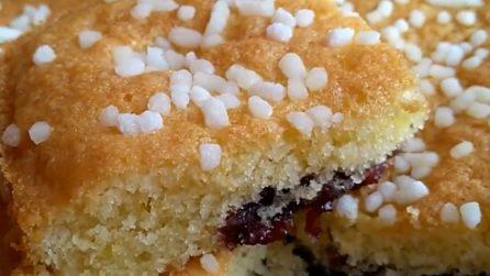 Tortina morbida di marmellata: ideale per la colazione