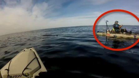Se ne sta tranquillamente in mezzo al mare e non si accorge di nulla: terrore in acqua