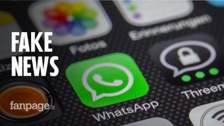 WhatsApp non sarà bloccato sugli smartphone di Huawei e Honor: ecco perché