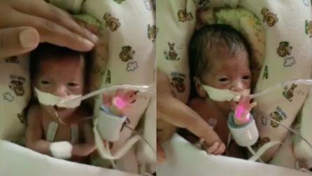 Le avevano dato poche speranze di sopravvivenza: ma questa piccolina ha dimostrato di essere più forte