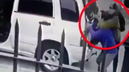 Punta la pistola alla testa dell'uomo: i cani intervengono in difesa del padrone