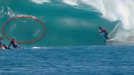 Compaiono durante la gara di surf: anche loro cavalcano le onde