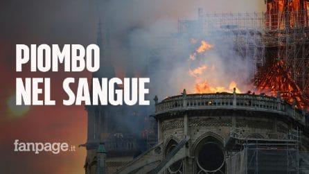 Incendio Notre-Dame: piombo nel sangue di un bambino di 7 anni, test sui residenti