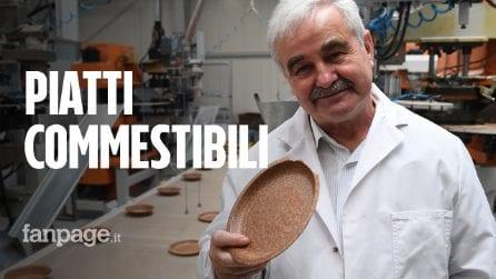 Ecco i piatti commestibili e biodegradabili che salveranno il futuro: come sono fatti
