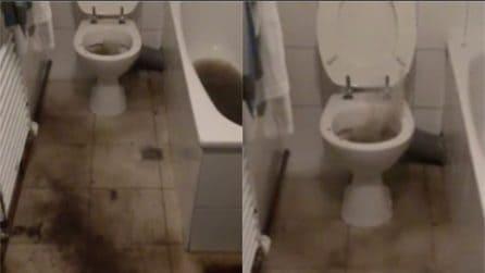 Entra in bagno e l'acqua esce dal water: la scena è impressionante