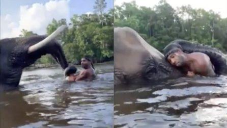 Faccia a faccia con l'enorme elefante: la lotta in acqua