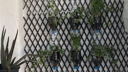 Ecco come fare un giardino verticale con delle semplici bottiglie di plastica!