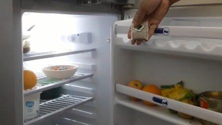 Come eliminare i cattivi odori dal frigorifero con 1 solo ingrediente