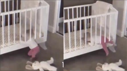 Mette la piccola nella culla, ma riesce a fuggire: poi scopre come fa