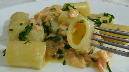 Paccheri al salmone con salsa di pomodorini gialli: un primo irresistibile