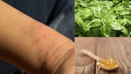 Punture di zanzare: 8 rimedi naturali per alleviare il prurito