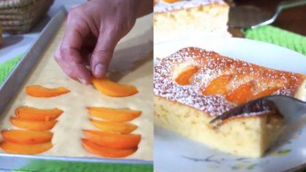Quadrotti all'albicocca: un dessert al gusto d'estate e buonissimo
