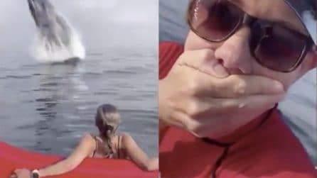 Gita in kayak interrotta, dall'acqua sbuca un enorme balena: attimi di puro terrore