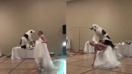 Hanno appena detto sì: il momento del ballo è davvero particolare