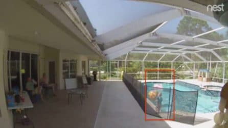 Bimbo di un anno cade in piscina e rischia di annegare: momenti di panico per il padre