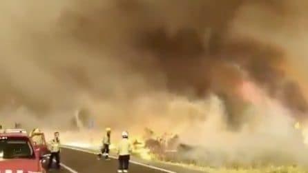 Terribile incendio causato dal caldo: un inferno di fuoco