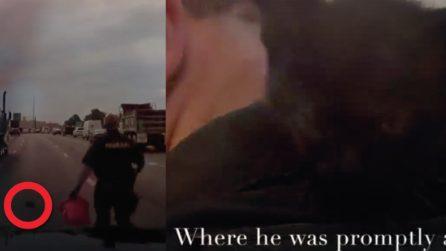 Gattino abbandonato in autostrada: sembra spacciato, ma un poliziotto arriva in tempo per salvarlo