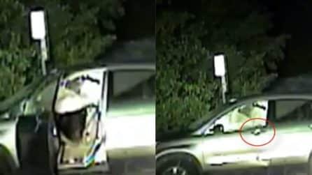 L'orso è intrappolato in auto: l'abile soluzione trovata dai poliziotti