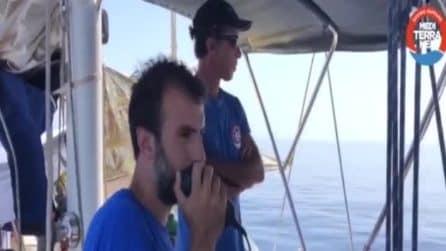 Lampedusa, nave Alex entra nel porto: il colloquio della ong con la Finanza