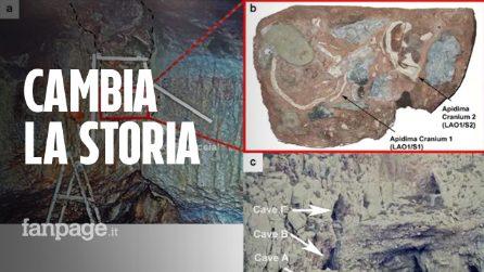 La scoperta che riscrive la storia: ecco il più antico Homo sapiens d'Europa