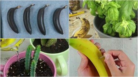 4 modi per usare le banane che non immagineresti!